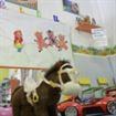 Centro Infantil Pequeños Pasitos
