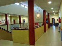 Colegio Público El Pinar