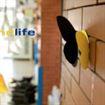 Escuelas Infantiles en Empresas Workandlife