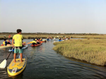 Flecha Extreme Kitesurf, Kayaks, Paddle, Surf, Campamentos de Verano